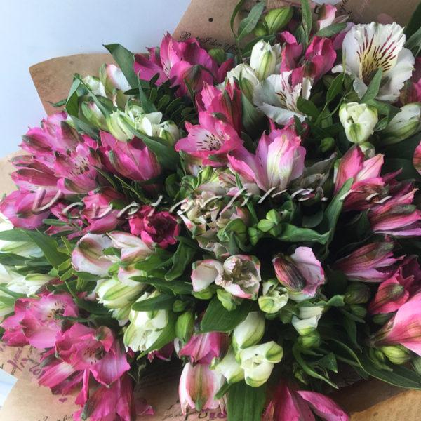 Доставка цветов в Тольятти   цветы Тольятти   Тольятти розы   ВцвеТочке   vcvetochke   купить цветы в Тольятти   букет Тольятти   цветы в тольятти дешево   купить цветы с доставкой в тольятти   8 марта   альстромерия