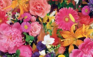 Доставка цветов в Тольятти | цветы Тольятти | ВцвеТочке | vcvetochke | купить цветы в Тольятти | букет Тольятти | цветы в тольятти дешево | купить цветы с доставкой в тольятти | выбор по цветам
