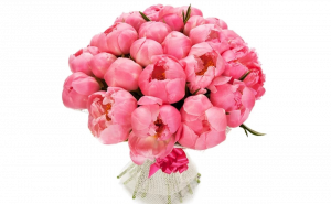пионы тольятти, купить пионы в тольятти, пионы, тольятти, доставка, пионы купить, цветы пионы, доставка цветов тольятти